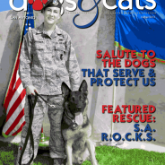 TX Dogs & Cats SA Magazine featuring SA R.O.C.K.S.!!